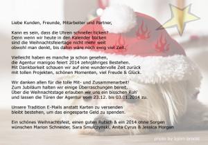 Weihnachtskarte 2013 blog